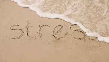 Healthy Aging Starts with Stress Reduction